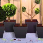 van Lint, plants @ home animatie